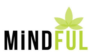 Mindful Dispensary-Aurora Station | Teajuana Teas - THC